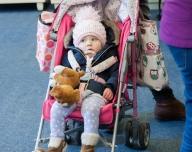 Teddy Bear Toddle 2016-8